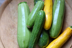 Zucchini green and yellow
