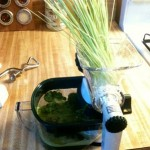 Manual Wheatgrass Juicer – Lexen GP27