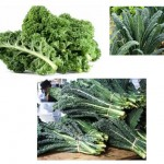 The Benefits of Kale and Kale Juice