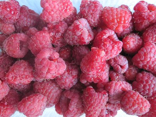 fresh raspberries before juicing