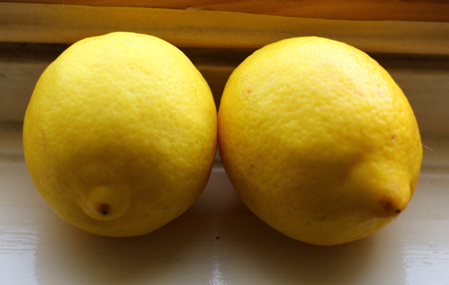 a-pair-of-lemons